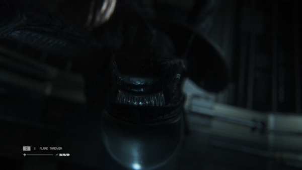 There are lovingly animated takedowns in Alien Isolation, unfortunately you're never the one initiating them.